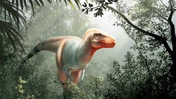 Halálosztónak nevezték el a T. rex újonnan felfedezett rokonát