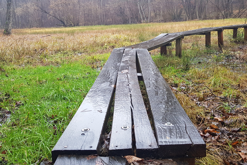 Az egyébként süllyedő lápréten fapallós kiépített úton lehet végigsétálni. A terület változatos növényi és állatvilágnak ad otthont, amit így lehet a leghatékonyabban védeni - az út nem terjed ki a láprét minden szegletére, védett növények közelébe nem lehet ilyen módon eljutni.