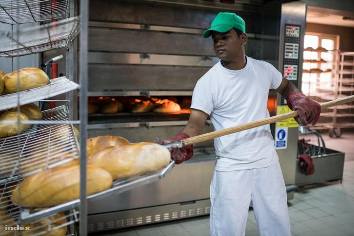 Ditrói pékség egyik Srí Lanka-i alkalmazottja munka közben