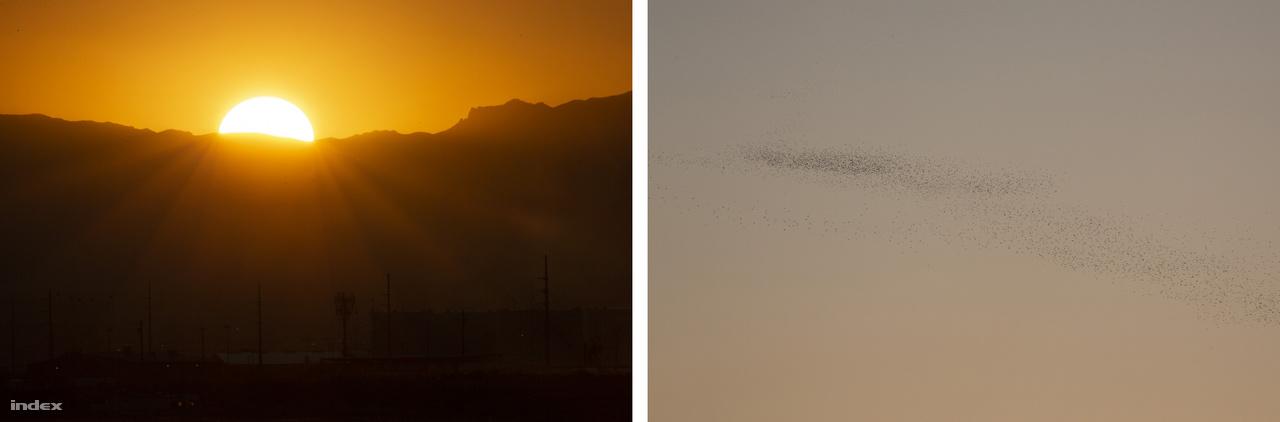 Fél öt körül végül a Nap is lebukott a Red Rock kanyon hegyláncai mögött. A távolban kavargó madárraj mintha kifejezetten velem gúnyolódott volna.