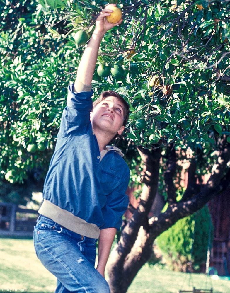 Joaquin Phoenix gyerekkorában sok sorozatban szerepelt itt-ott, benne volt például a Gyilkos sorok egyik részében is.