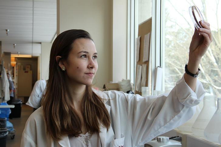 Beth Culp, a tanulmány szerzője