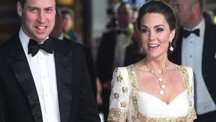 Vilmos herceg és Katalin hercegné is visszavesznek a hivatalos megjelenéseikből