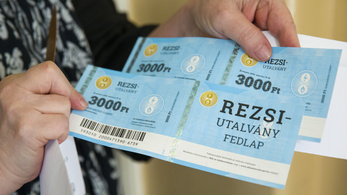 84 millió forintért vittek ki 361 milliónyi rezsiutalványt a külföldön élő nyugdíjasoknak