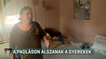 Súlyosan fogyatékos unokájával nem kap albérletet egy idős nő