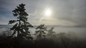 Rekordközeli tavaszi meleggel indul a hét