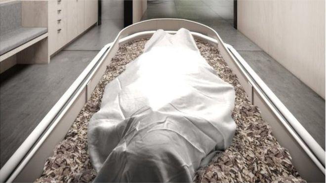 Egy holttest a komposztálóládában