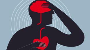 Tényleg növeli az agyvérzés esélyét a túl alacsony koleszterinszint?