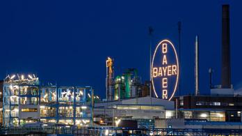Újabb per miatt fájhat a Bayer feje