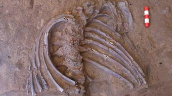 Ritka csontváz segíthet megérteni a neandervölgyiek temetkezési szokásait