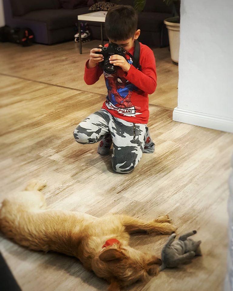 A kép alapján az öt és fél éves Venci is szeret fotózni. Ahogy apjának, neki is az egyik kedvenc fotóalanya Sári kutyus.