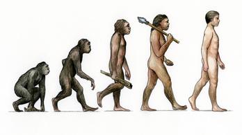 Evolúciótagadó rajzpályázatot támogat a kormány