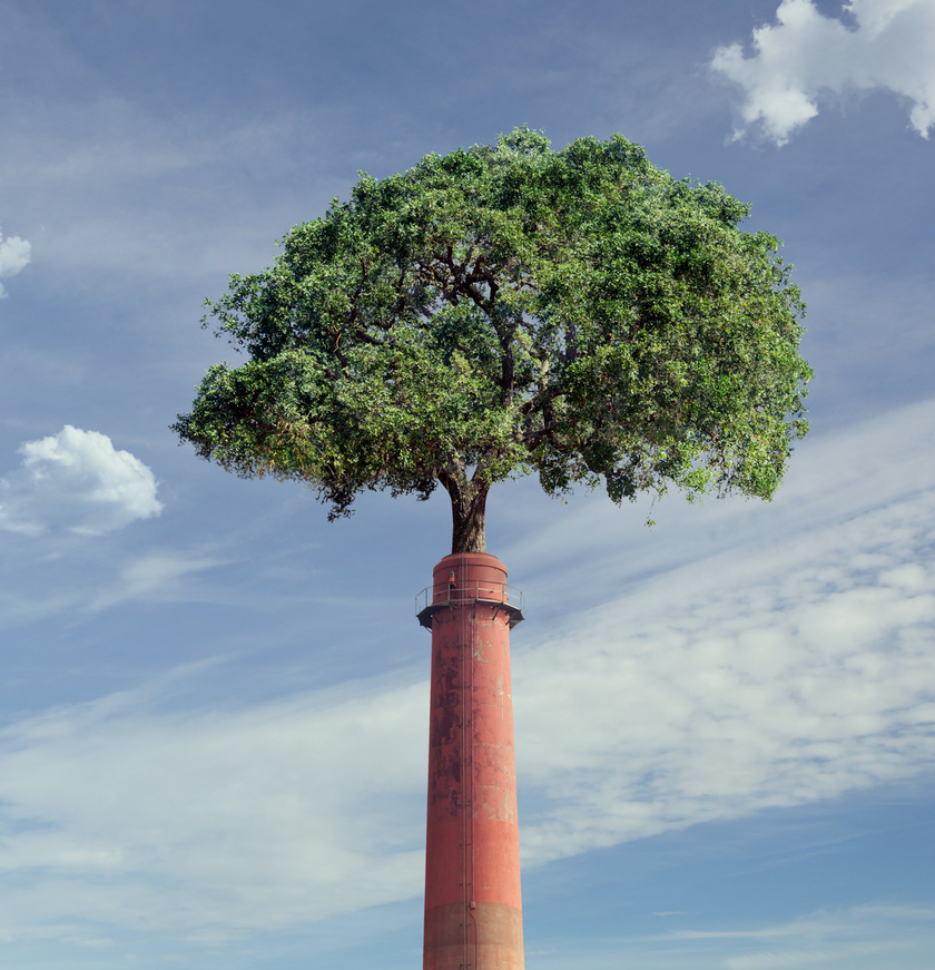 karbonsemlegesseg