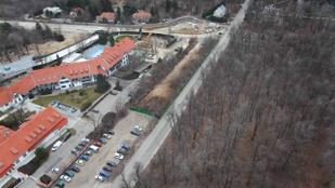 Kivágták a fákat a Normafánál a parkolóépítéshez