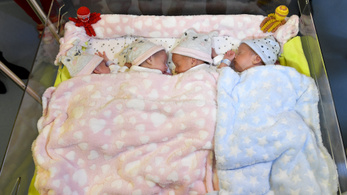 Nem a genetikán múlik, ha sok egynemű gyerek születik egy családban