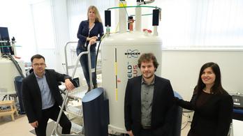 Trójai falóval fejlesztenek gyógyszereket szegedi kutatók