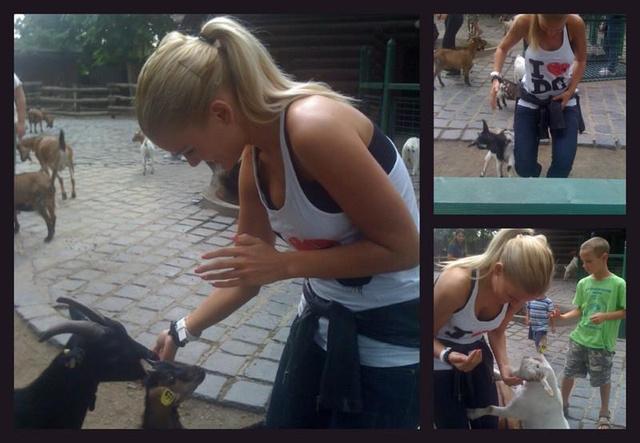 Kinga állatkerti kecskét etet, a kecske láthatóan örül az ételnek.