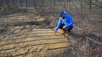 Eltüntették az agyonvert kutyák nyomait Hajdúsámsonban