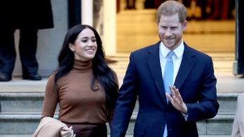 Harry hercegék kiestek a pikszisből, nem használhatják tovább a királyi védjegyet
