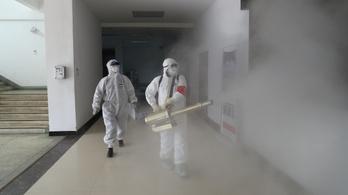 Magyar utazási irodák: kevesen mondják le az utakat a koronavírus miatt