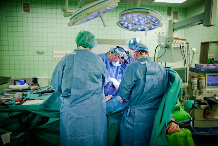 Veseműtét a Semmelweis Egyetemen