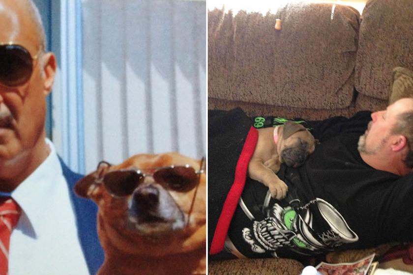 Apukák, akik sosem akartak kutyát: aztán minden megváltozott