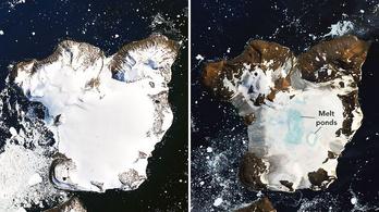 Néhány nap alatt eltűnt egy antarktiszi sziget hótakarójának ötöde