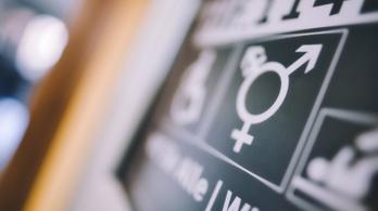 Veszélyes-e a társadalomra a gender?