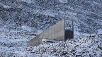 Több tízezer új vetőmaggal gazdagodott a norvég ítéletnapi bunker