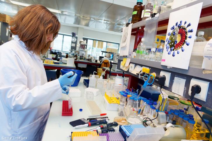 Sandrine Belouzard, a Lille-i Pasteur Intézet virológus kutatója az első francia koronavírusos beteg vérmintáit elemzi