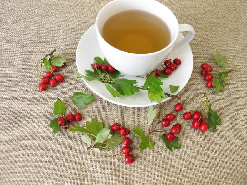 A galagonya a legerősebb szíverősítő gyógynövények egyike, serkenti a vérkeringést, védi az ereket, erősíti a túlterhelt szívet, és értágító hatású, így csökkenti a vérnyomást és a pulzust. Főként virágos hajtásából főznek teát, mely flavonoidokat, úgynevezett kratégusz-szaponint, kolint, antioxidáns hatású kvercetint is tartalmaz.