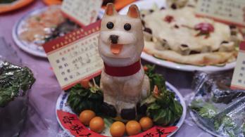 Koronavírus: Kínában betiltanák a kutya- és macskahús fogyasztását