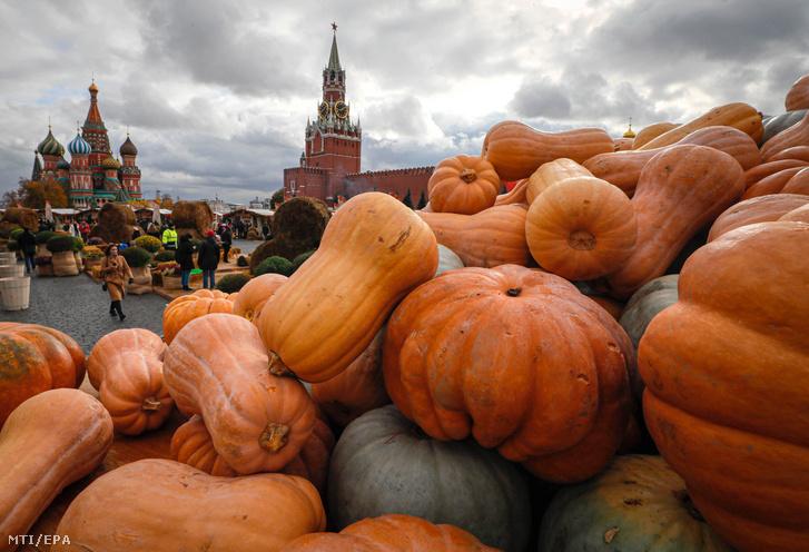 Sütőtökök egy teherautó platóján az Arany ősz nevű termelői fesztiválon a moszkvai Vörös téren