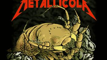 A Metallicáról neveztek el egy mélytengeri rákot