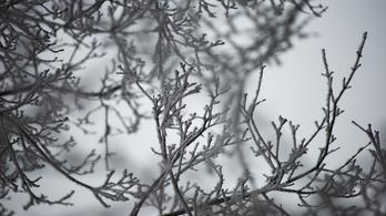 Csütörtökön havazhat az ország magasabb pontjain