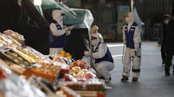 Litvániában, Új-Zélandon és Nigériában is külföldet megjárt polgárok betegedtek meg