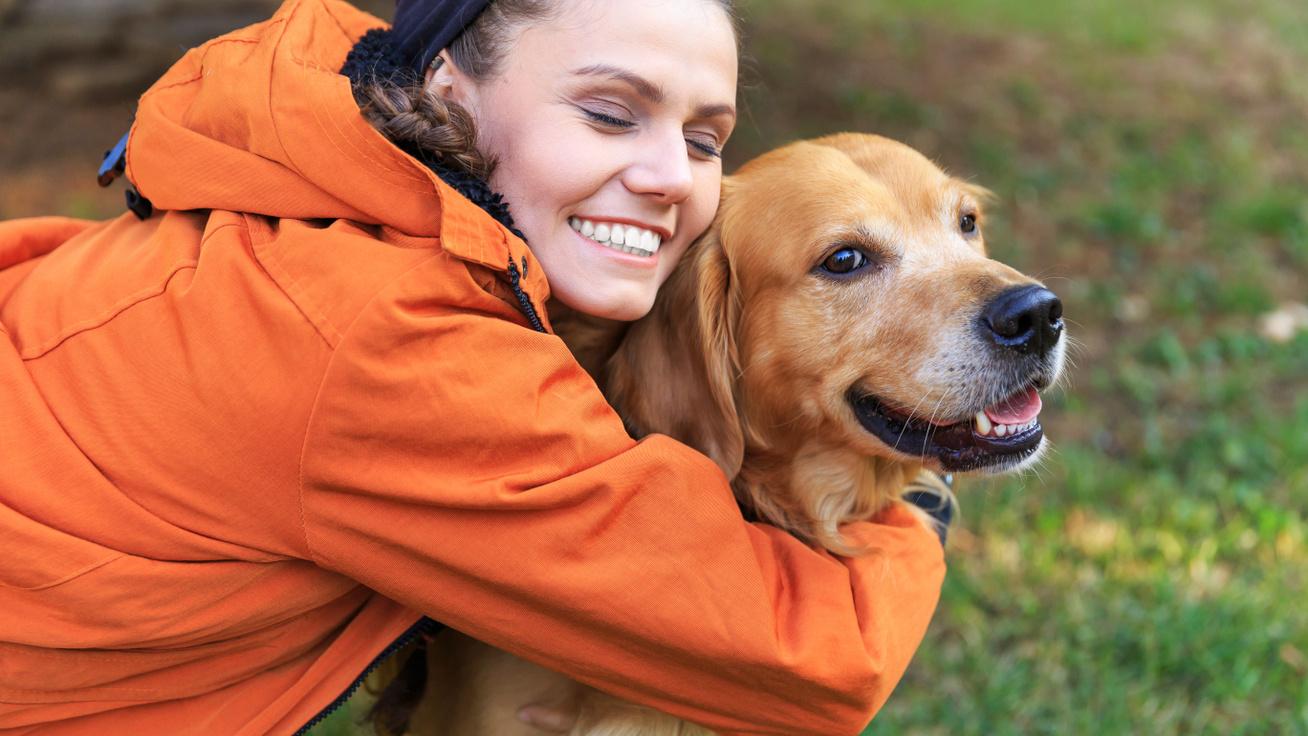 Eddig ismeretlen érzékszervet fedeztek fel az ELTE kutatói a kutyáknál