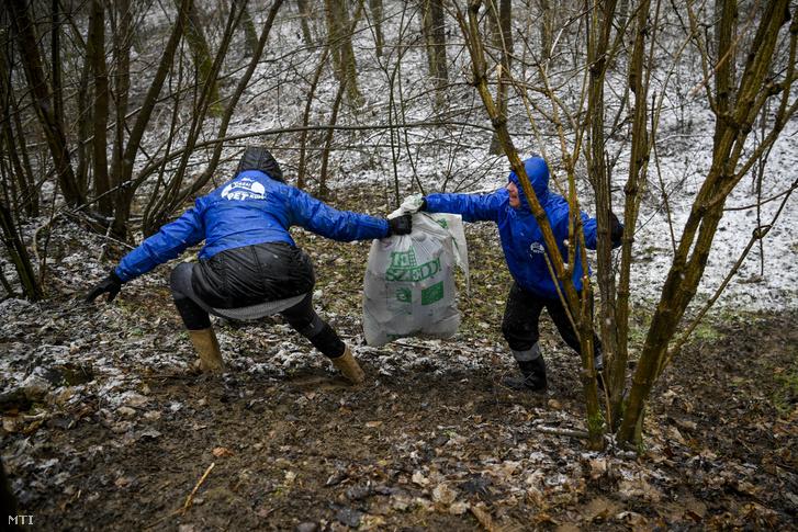 Pénteki szemétszedés a Vásárosnamény és Tiszaszalka közötti erdőben