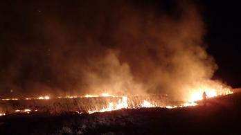 Három hektáron égett a nádas Balatonfenyvesnél