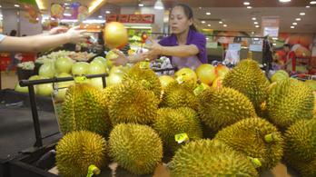 Kiderült, miért olyan büdös gyümölcs a durián
