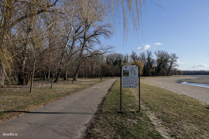 Az Építők parkja, erre a környékre tervezik a fizetős, körbekerített strandot