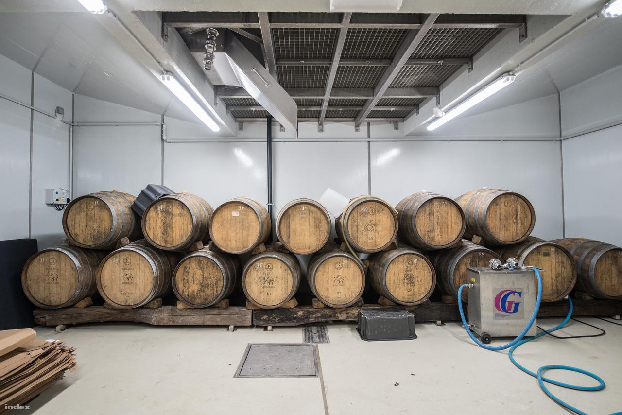 """Emmer Szabolcs és Béger Ákos 45 hektárnyi területen gazdálkodik, és saját bevallásuk szerint szeretnek kísérletezgetni, tesztelik, hogy mire képes ez a borvidék és mire képesek ők. """"Fontos célunk, hogy megtaláljuk azokat a szőlőfajtákat és a hozzájuk leginkább illő borkészítési eljárásokat, melyek jól tükrözik a Neszmély borvidék valódi értékét"""" - nyilatkozták. A Kősziklás főként a vendéglátóiparnak szállít, és szeretnék, ha a helyi éttermek kínálatában sokkal hangsúlyosabbak lennének a lokális borok. A kínálat gerincét a friss, üde, gyümölcsös fehér- és a rozé borok adják, de mivel szerintük a Neszmélyi borvidéket jobban be lehet mutatni a fahordóban erjesztett és érlelt borokon keresztül, így ezek is egyre nagyobb hangsúlyosabban vannak jelen. A kedvencük a savignon blanc, de reduktív fehér boraikhoz rizlingszilváni, irsai olivér, királyleányka, olaszrizling, sárga muskotály fajtákat is használnak, a rozék pedig pinot noirból és kékfrankosból készülnek. Ebből készülnek a hordós vörösborok is, viszont az érettebb fehér boroknál a juhfark, hárslevelű, a rajnai rizling, a pinot blanc és a chardonnay is megjelenik."""