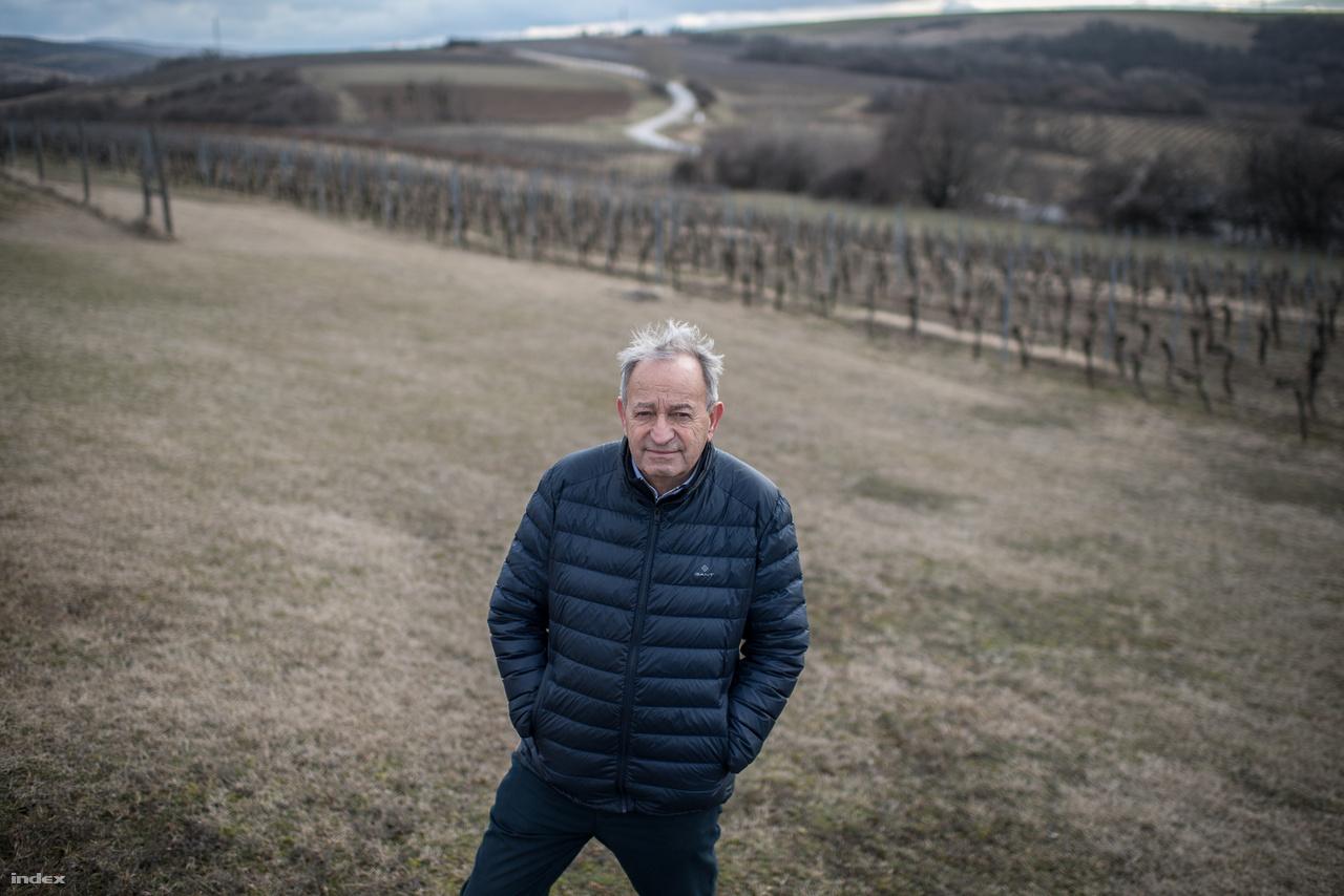 """A Hilltop borászat története a rendszerváltás idejére nyúlik vissza: a főborász, Kamocsay Ákos 23 évig dolgozott a móri állami gazdaságban, az egyik alapító, Keresztury Éva pedig Angliában élt ekkor, de néha Magyarországra szervezett az érdeklődő angoloknak bortúrákat. Móron találkoztak Kamocsayval, akivel közösen bort kezdtek szállítani az állami kereskedelmen keresztül a kapuk megnyitása után a móri borvidékről egyenesen Angliába. Idővel azonban az állami rendszer és a móri állami gazdaság is tönkrement, ekkor jutottak arra, hogy ideje lenne saját bort készíteniük. Helyszín választásban Mór lett volna a kézenfekvő, de ott nem sikerült helyet találni. Végül Neszmélyen leltek rá egy TSZ pincére, ami Kamocsay szerint a """"kutyának se kellett"""". 1993-ban megvásárolták, 1994-ben hitelből hozzáépítettek, 1999-ben pedig végül az étterem és szálloda rész is megépült. Később más borászatok is jöttek a borvidékre, de 1993-ban a Hilltop volt a borvidék egyedüli olyan pincészete, ami a piacon is megjelent - emiatt évekig jobban ismerték a Hilltop nevét, mint magát Neszmélyt, ami Kamocsay szerint is sokáig ártott a borvidéknek."""