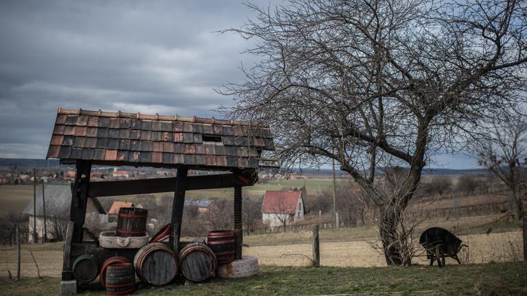 Az első generációs borászok vidéke, ahonnan még Angliába is visznek bort