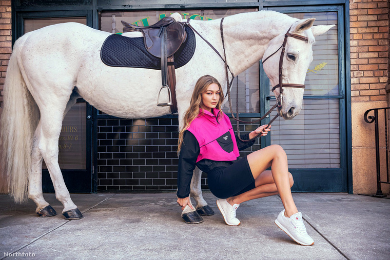 Sajnos nem sokat értünk a lovak testbeszédéből, és a képen látható állat arcáról sem tudunk sok következtetést levonni, de reméljük, élvezi, hogy a modell ilyen kitekert pózba vágta magát előtte