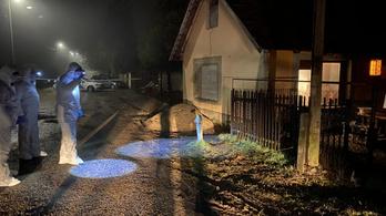Egy 50 éves férfit gyanusítanak a pénteki érdi gyilkossággal