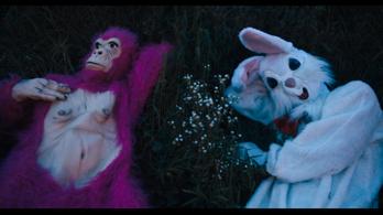 Anti-randi a rózsaszín gorillával és az őrült fehér nyúllal
