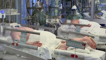 Koronavírus: több mint négyezer halott