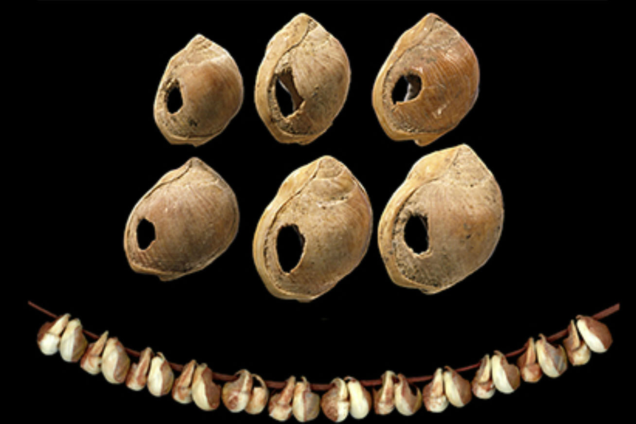 Izraelben, a Skhul barlangban leltek rá erre a tetszetős, 110 ezer esztendős csigaház láncra, melyet az első modern ember által készített ékszerként emlegetnek.