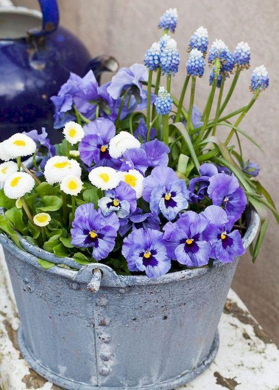 Attól még nem kell kidobni egy régi vödröt, hogy évek óta nem használták, és az állapota sem olyan már, mint fénykorában: tökéletes virágcserép válhat belőle, ami egyből tavaszi hangulatot varázsol a lakásba.